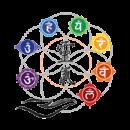 Nathalie Borg énergéticienne bien être. Séances énergétiques et autres prestations en cabinet (Sainte-Catherine, près de Lyon, Rhône) ou à domicile, en présentiel ou à distance. Je vous propose Reiki, Champ mental, Communication animale, Calinothérapie et Balades connexion.